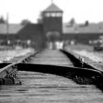 8 novelas sobre la barbarie nazi y el holocausto judío