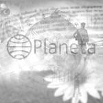 Novedades editoriales. Junio 2015. Planeta