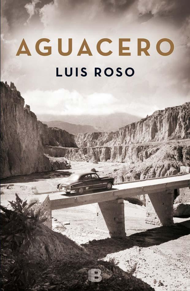 Aguacero, de Luis Roso
